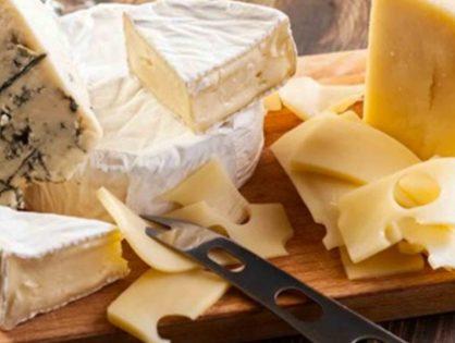 Cheese (Dairy)